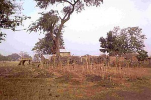 landbouw kpare